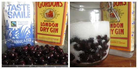 Blackcurrant Gin   Pattern . Paint . Pan